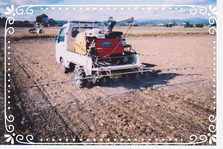 【楽輪】品番001番 麦畑 除草剤散布