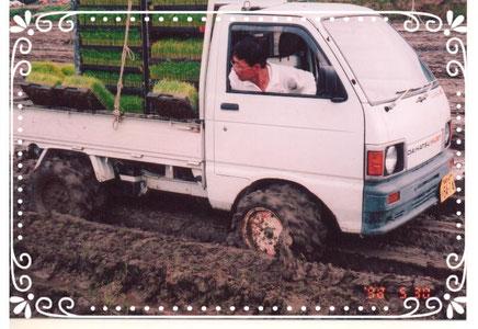 【楽輪】ひラジアルタイヤ8本八輪型 苗だし