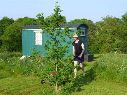 Der Familienbaum wurde von Robs Vater gepflanzt