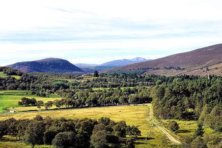 Blick vom Creag Choinnich in die Highlands