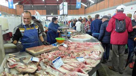 (Fisch & Obst-) Markt in Olhao