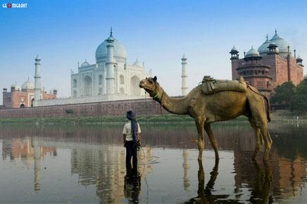 Граждане Грузии могут получить визу в Индию уже в Тбилиси