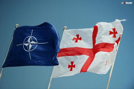 НАТО в Грузии не будет?