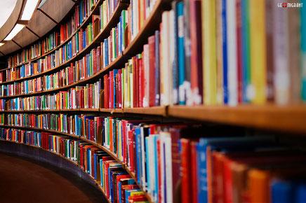 Грузия вошла в мировую пятерку по изданию книг