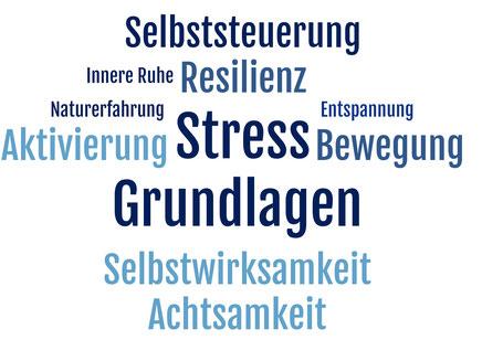 "Themen Lehrgang ""Stressberatung & Stressmanagement IKP"""