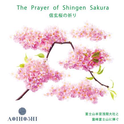富士山本宮浅間大社、信玄桜、しだれ桜でレコーディング