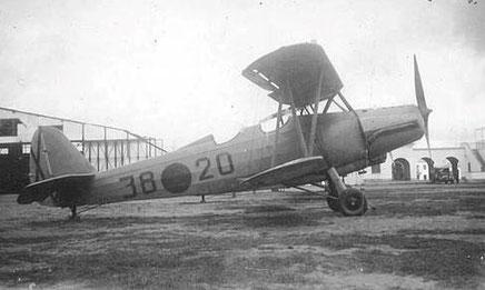 GO 145   (Wikimedia Commons, Angel Matilla)