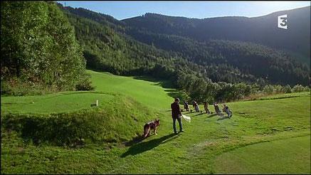 """Golf Semmering, épisode """"Le complot"""" (S4 épisode 7)"""