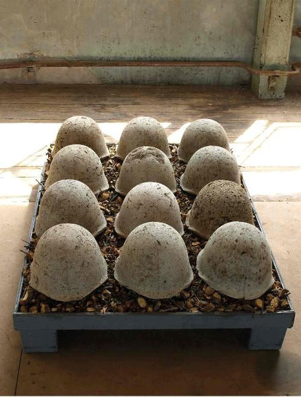 zwölf aus russischem Mutterboden und Beton gegossene M52 Helme positioniert auf einer mit gehäckseltem Holz befüllten Stahlpalette