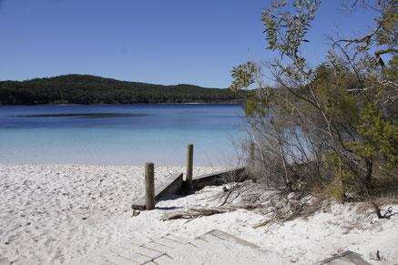 Fraser Island - die grösste Sandinsel der Welt