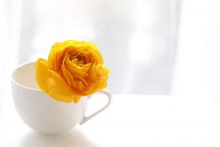 小鳥のオーナメントが飾られたデスク。広げられたリングノート。コーヒーの入ったマグカップ。