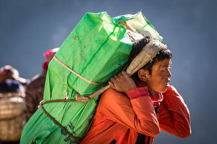 Photographie d'un jeune Sherpa acheminant les vivres indispensable aux habitants de khumjung, au Népal, village situé à près de 3800m d'altitude.