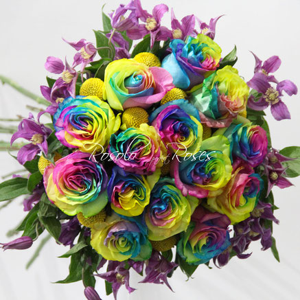 Roses Rainbow & Clematis, dès CHF 95.00