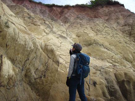 南崎海岸の熱水変質(間欠泉跡)地形