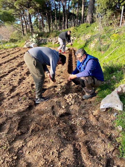 Annas Jungs bei der Arbeit. Gemeinsam Anpflanzen.
