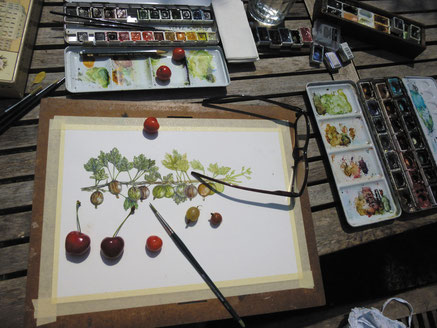 mein Atelierplatz im Garten der Zeichentisch Foto © Caroline Ronnefeldt