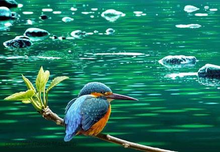 カワセミ 野鳥画 翡翠 日本の野鳥 青い鳥 イラスト