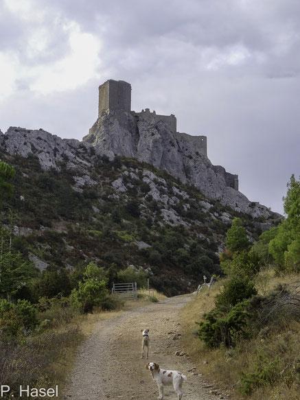 Bild: Château de Quéribus