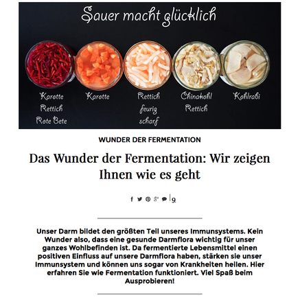 wunder der fermentation ecowoman