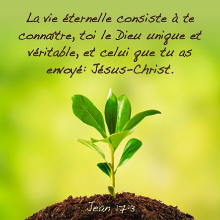 Pour obtenir la vie éternelle, il nous faut avoir foi dans le sacrifice rédempteur de Jésus-Christ, il nous faut croire en lui. Pour cela nous devons lire et étudier les Saintes Ecritures. Puis conformer notre vie à la volonté de Dieu.