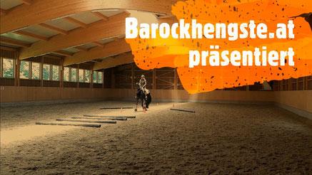 Sandra Plasser und Friesenhengst Unyck