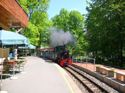 """Die Dampflok fährt in den Bahnhof """"Küchwaldwiese"""" ein"""