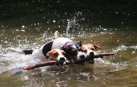 Wasser als Passion