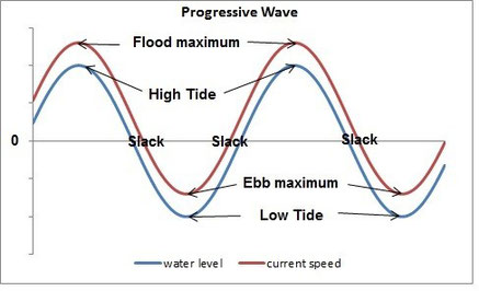 Progressive wave form of tidal currents in the open ocean