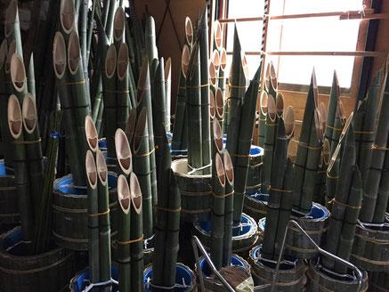 正月飾りの門松は鯖江・丹南地区の花ひろに