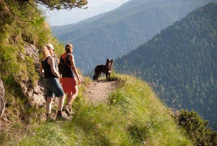 Hund wartet auf zwei Wanderer vor Wegbiegung mit Blick auf umliegende Berge