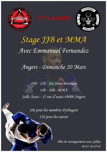 Affiche stage JJB et MMA