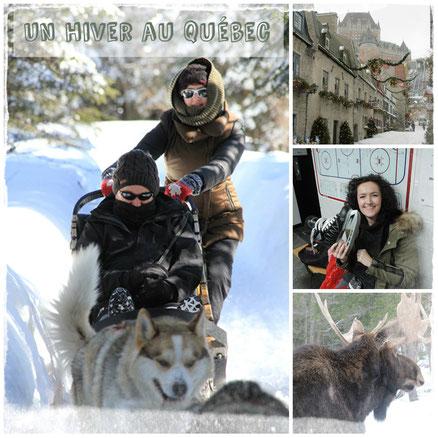 faire du chien de traineau au Quebec