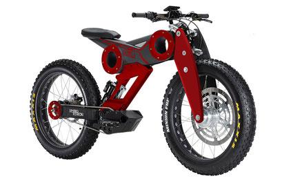 E-Bike Moto Parilla bei EinfallsReich!