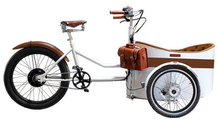 Lastenbike Rayvolt Trixie bei EinfallsReich!