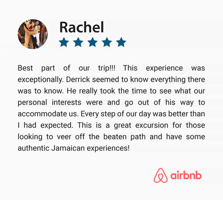 Five Star Positive Guest Review on Day Trip to Ocho Rios, Jamaica
