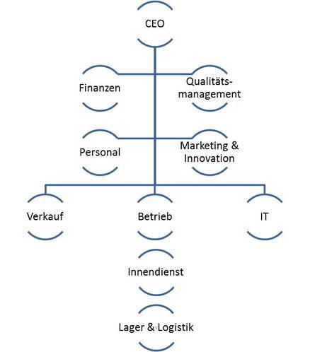 SwissMedLogic AG - Organisationsstruktur