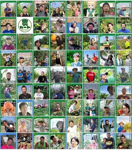現在151名が参加している「農カード」
