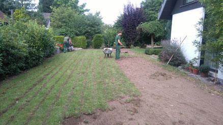 Während der Arbeiten: Rasen schälen, Vegetationsfläche schälen von GreenFairway e.K.