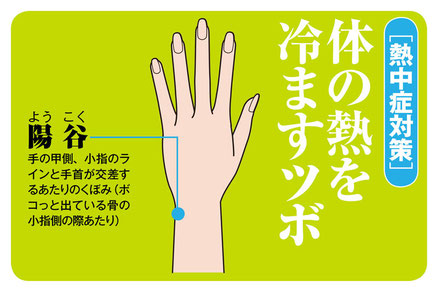 小牧 鍼灸 はり 治療 腰痛 坐骨神経痛 肩こり 首こり 自律神経 頭痛 めまい 過敏性腸症候群 下痢 冷え 熱中症