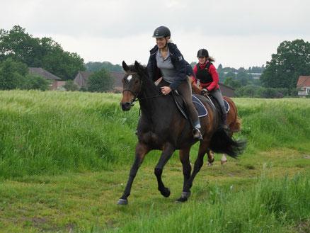 Ein frischer Galopp im Geländ! Spaß für Pferd und Reiter ist wichtig.