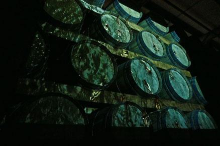 """Laurent Valera a présenté sa vidéo lors de son exposition à Rauzan """"Partage des eaux"""""""