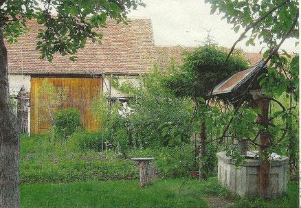 Bauerngarten bei Landlern in Siebenbürgen