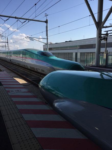 函館在住エリー、こ…これは函館北斗駅!!! 男子がいると鉄道チョットだけわかるようになります(笑)