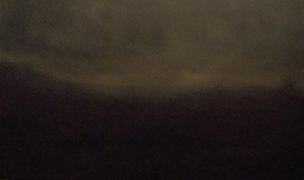 Letztes Licht, Acryl auf Hartfaser, 40x80, 2015