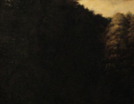 Schwarzwald, Öl auf Leinwand, 60x80, 2010