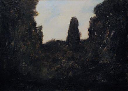Acryl und Öl auf Leinwand, 70x50, 3013