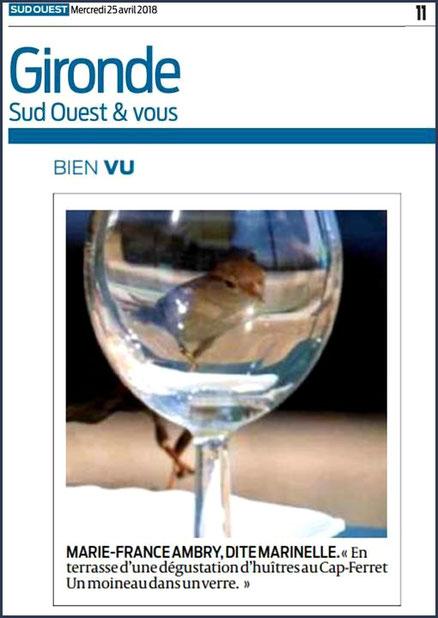 Photo Marinelle sur Journal Sud-Ouest, page Gironde, édition du 25/04/2018