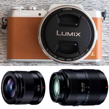カメラ本体+単焦点レンズ+望遠レンズ