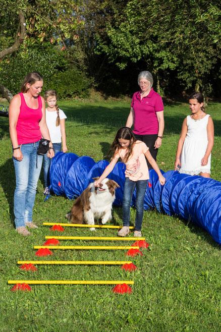 Schulhund Border Collie Lou, lässt sich gerne über den Parcours führen