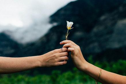 Eine Blume wird romantisch übergeben